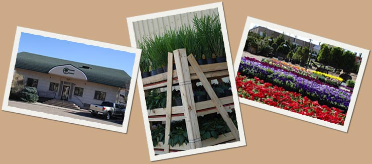We Have Been Serving The Nursery Industry For Over 73 Years Conveniently Located Just West Of Santa Fe And Dartmouth On 30 Sprawling Beautiful